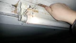 Лайфхак если лампа дневного света в гараже мигает в мороз(, 2016-11-03T21:57:22.000Z)