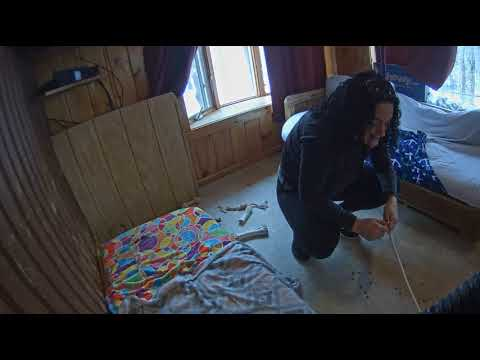 Download Youtube: Megan leash training Buckeye Willie sunroom 230pmish 1112018