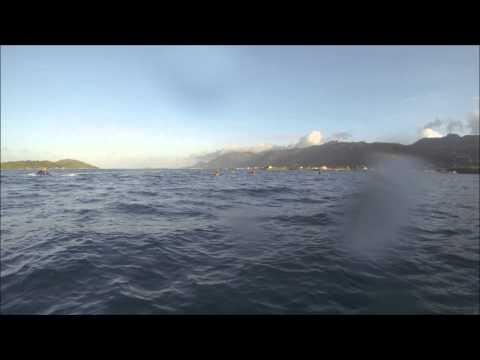 Team Fenn - Mahe Seychelles