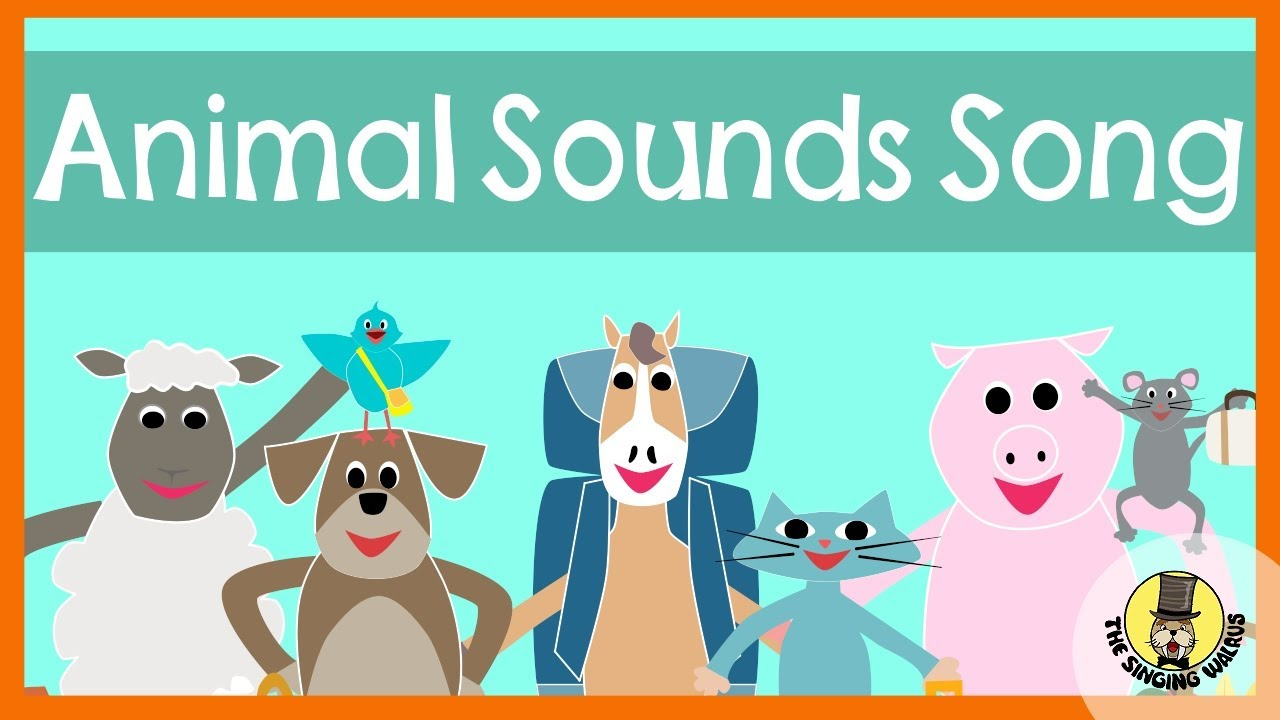Animal Sounds Song | The Singing Walrus - YouTube
