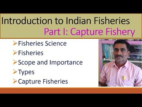 Introduction To Fisheries Part I Capture Fisheries