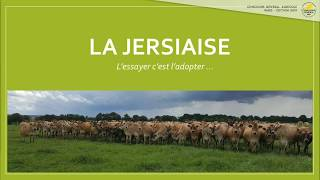 Concours Race Jersiaise 2019