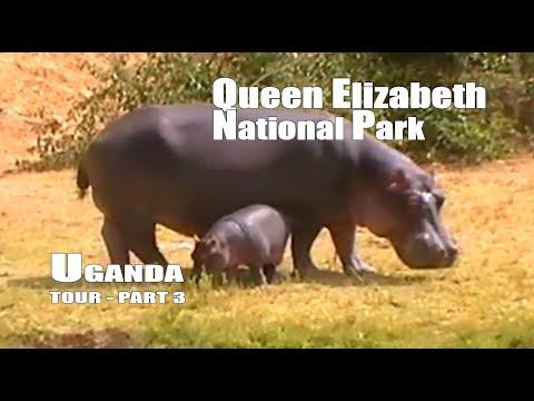 Viaje a Uganda, parte 3  Safari en el parque nacional Queen Elizabeth