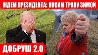 Добруш ждет Лукашенко! Косим траву в конце зимы, моем здания, красим всё и все