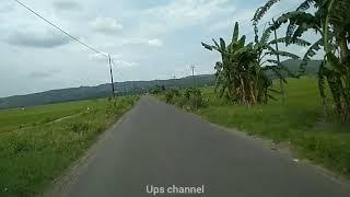 Keindahan alami jalan menuju desa Prawoto kecamatan Sukolilo kabupaten Pati