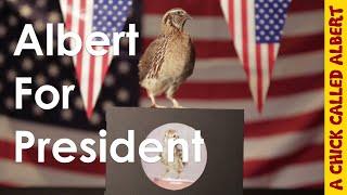 Albert For President