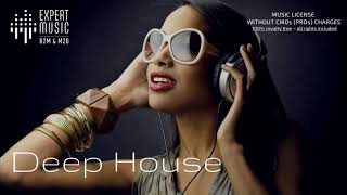 Licensed music for business - Deep house (part III)