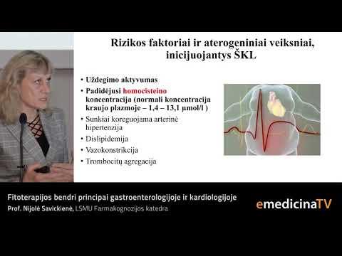 folio rūgšties hipertenzija skiriama arba ne 1 laipsnio neįgalumo hipertenzija