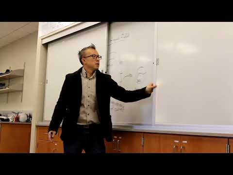 Differential Geometry: Frenet Frame Fields