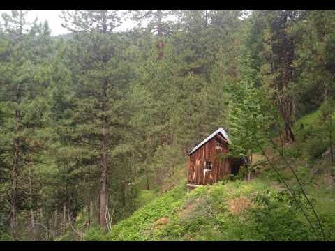 Bigfoot Haunts Old Cabin In The Woods Outside Cascade, Idaho