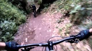 MTB-Trails in Thüringen (Eisenach) - Biken at Home