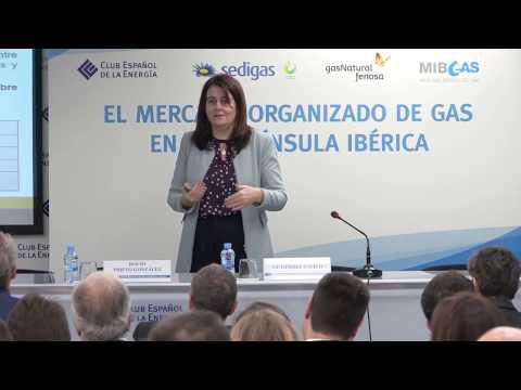 El Marco normativo europeo del gas natural