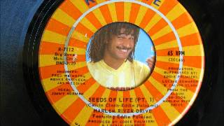HARLEM RIVER DRIVE feat. EDDIE PALMIERI-the seeds of life pt.1