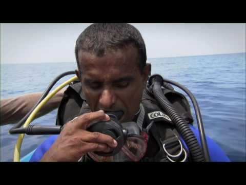Dive Adventures Diving HMS Hermes - Sri Lanka