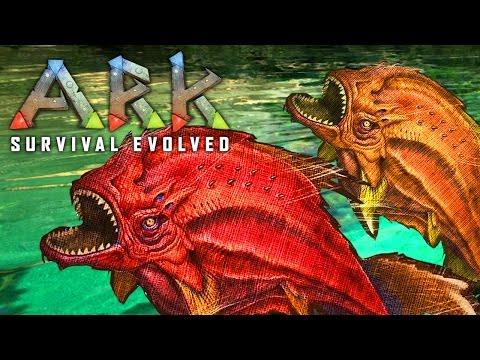 TASTY PIRANHAS ★ ARK: Survival Evolved (1)