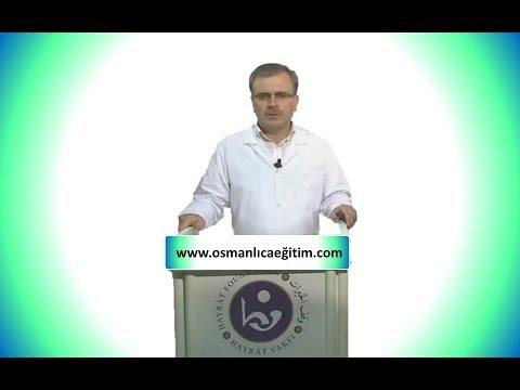 Osmanlıca'da Arapça unsurlar (Giriş) (1)