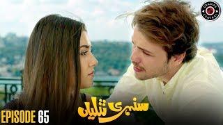 Sunehri Titliyan | Episode 65 | Turkish Drama | Hande Ercel | Dramas Central