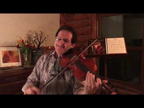 The Art Of Swing Violin by Stephan Dudash