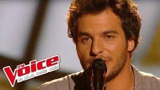 Pascal Obispo – Lucie | Amir Haddad | The Voice France 2014 | Prime 3