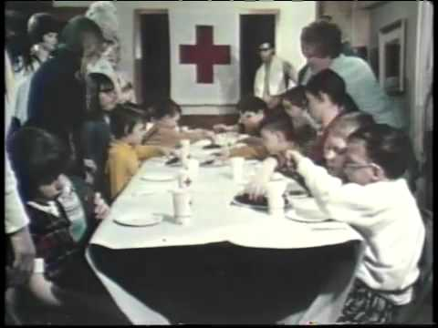 Introduction to the American Red Cross