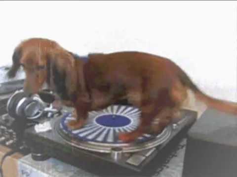 Barry Sisters - Chiribim Chiribom (DJ Comment remix)