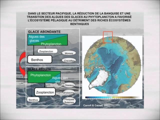 Louis Fortier - Changements climatiques et biodiversité en Arctique (4/4)
