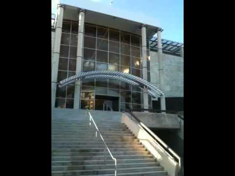 Sculpture Garden/Pond Puerto Rico Museum of Art