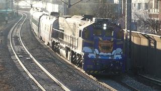 S-Train 南道海洋観光列車 新吉駅通過 KORAIL Namdo Sea Sightseeing Train