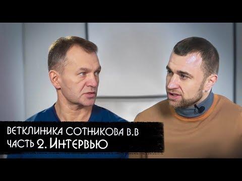 Ветклиника Сотникова Владимира Валерьевича. Часть 2. Интервью