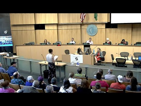 Seattle City Council Sustainability & Transportation Committee Public Hearing 6/11/19