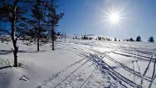 Путешествие в волшебную Лапландию ! Lapland.(, 2015-07-09T10:12:49.000Z)