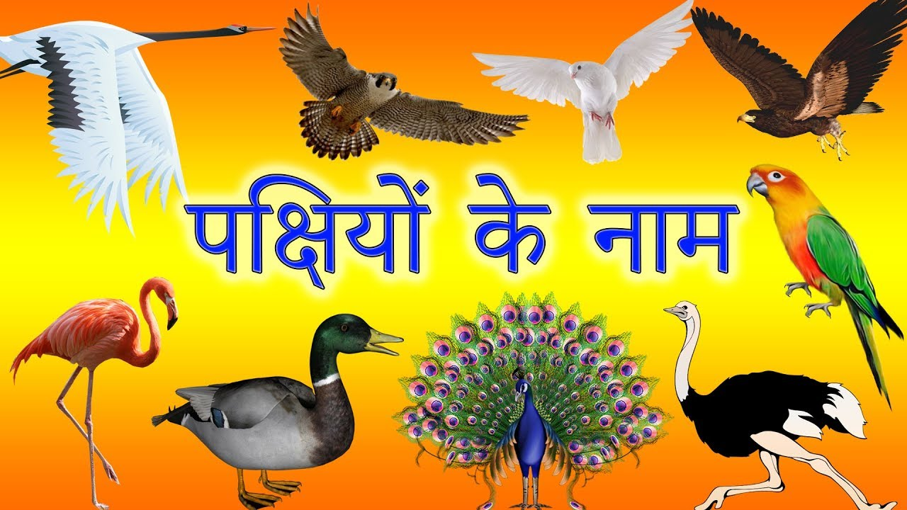 Happy new year 2020 animated picture