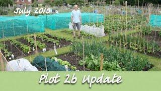 The Allotment Garden - July 2015 - Plot 2b Update