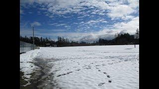 A ton of Snow to melt