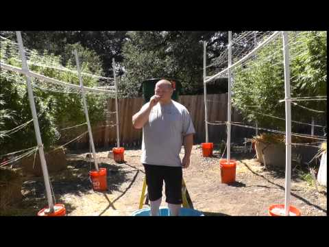 The Ice Water ChallangePart3