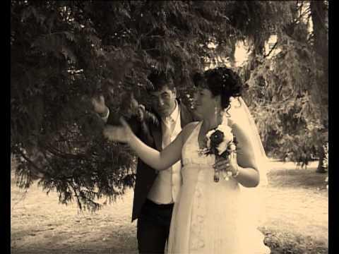 Filmări Fotografii Muzică Staroste Nunţi Baia Mare Tel 0742066231