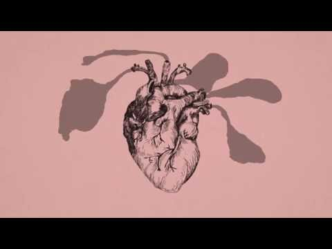 José González - Hand On Your Heart (Lyric Video)