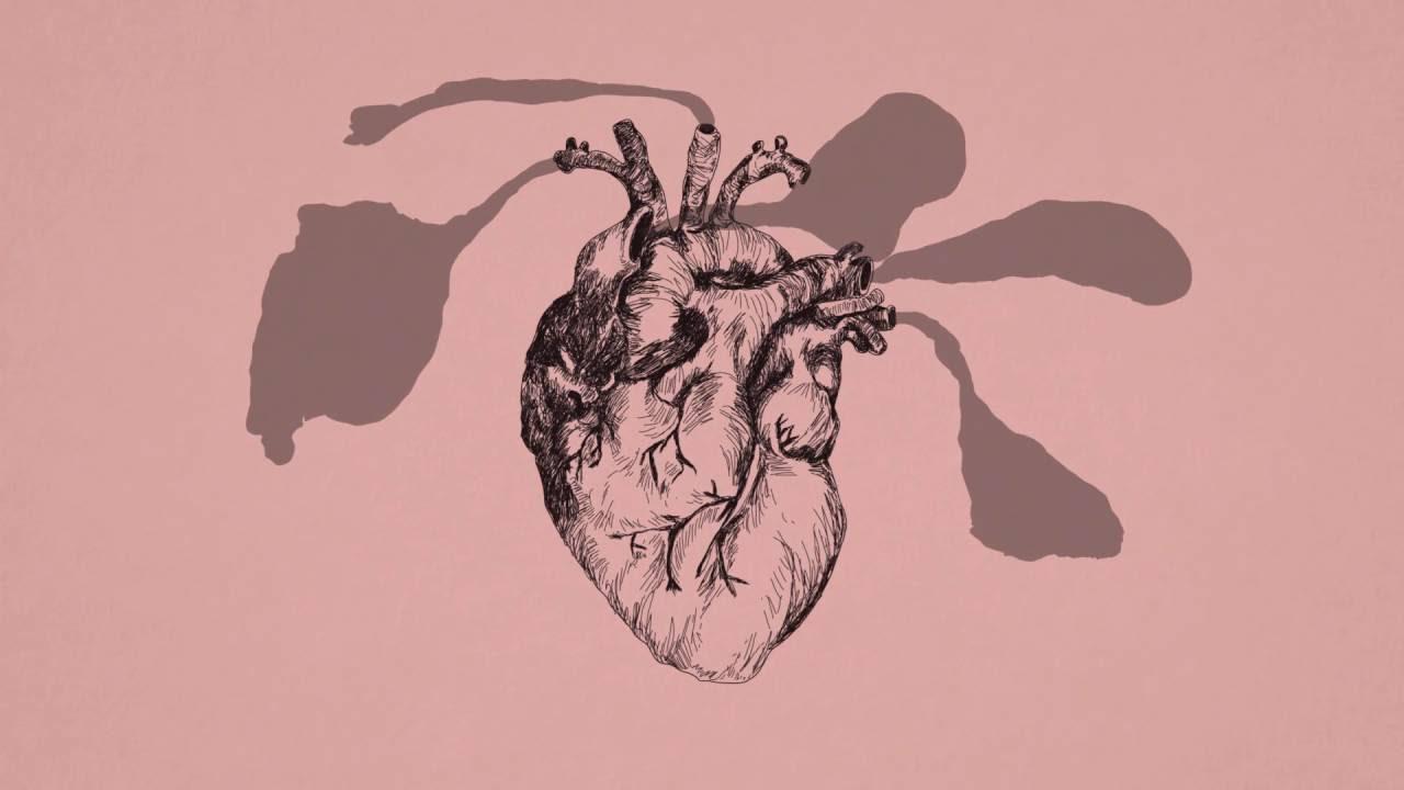 jose-gonzalez-hand-on-your-heart-lyric-video-jose-gonzalez-official