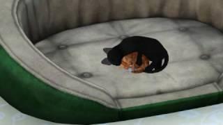 The Sims 3: Кошка спит с котенком в обнимку)