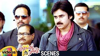 Download Video Pawan Kalyan Punch Dialogue   Attarintiki Daredi Telugu Movie   Trivikram   Samantha   Pranitha MP3 3GP MP4