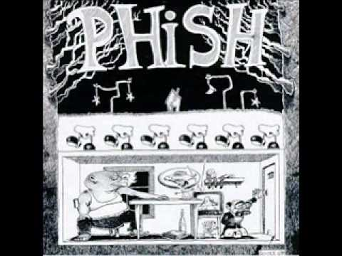 Golgi Apparatus Lyrics - Phish.net