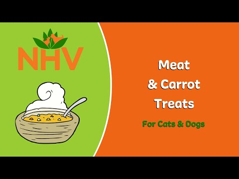 DIY Meat and Carrot Treats for Cats and Dogs 🍗🥕