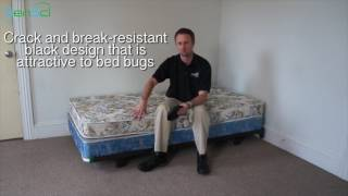 BlackOut Bed Bug Interceptor