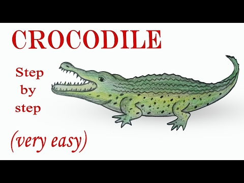 Vote no on very easy tutorial for croc for Easy to draw crocodile