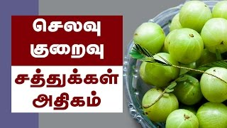 Video Amla Health Benefits ( Indian Gooseberry ) - Tamil Health Tips download MP3, 3GP, MP4, WEBM, AVI, FLV September 2018