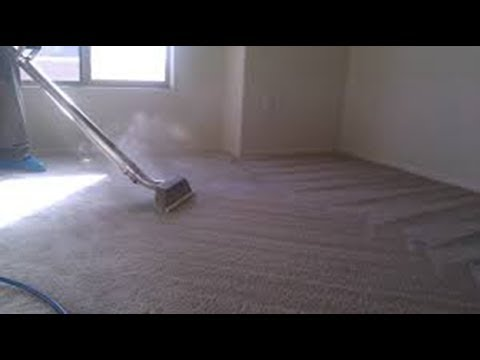 Best Carpet Cleaning Experience Springfield Ma 413-532-3990
