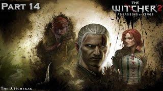 Witcher 2 Assassins of Kings Часть 14 Кошмар Балтимора