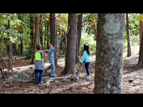 Inside The Woods at Greensboro Montessori School