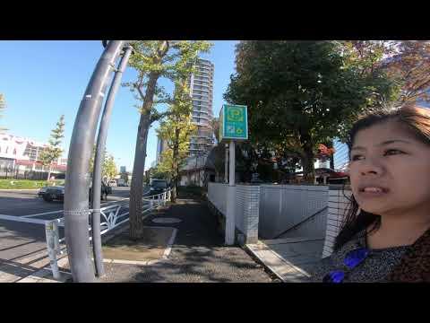 SHIBUYA TOKYO, Walk in nearby park during a Trade Fair