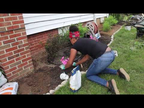 Garden Bed Clean Up| Weeding| Mulching| Garden Addictz